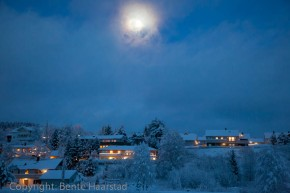 Blue Winter – Bente Haarstad