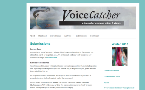 Voice Catcher a journal of women's voices & visions is open for submissions until4/30/13