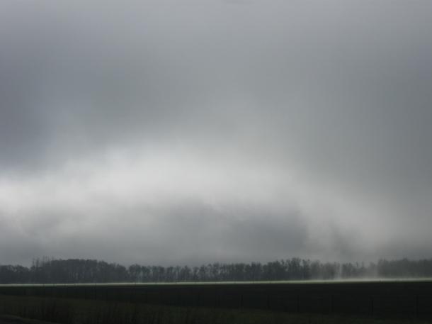 Fog-light driving to Eugene_ angel card 007