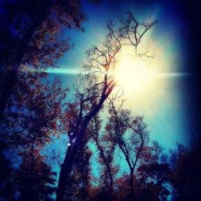 2 photos by AmandaTollett